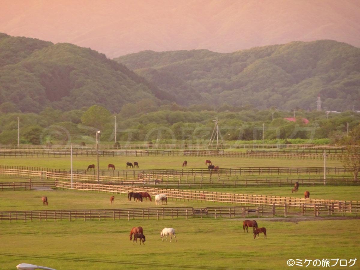 みついし昆布温泉 蔵三から見る牧場